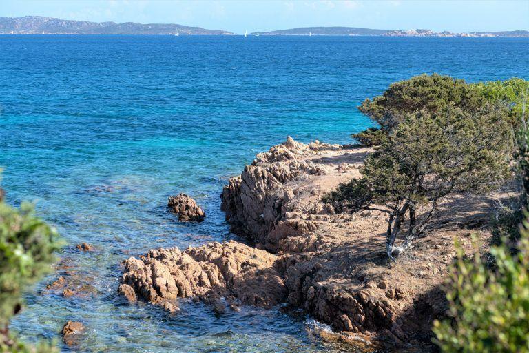 Palau Cove 1